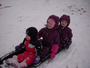 Here are the three troopers...Audrey and Isaac were not quite up for the sled.