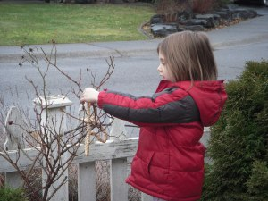 Rylee hanging her cheerio string for the birds