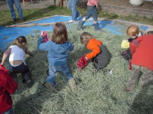 A treasure (candy) search in the hay pile