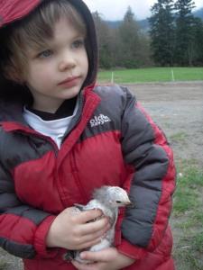 caleb-and-chick