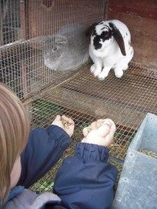 kyler-with-bunnies