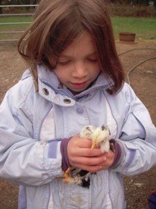 rylee-and-chick