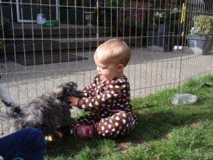 audie & pup