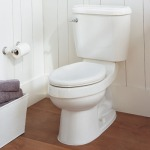 American_Toilet_b